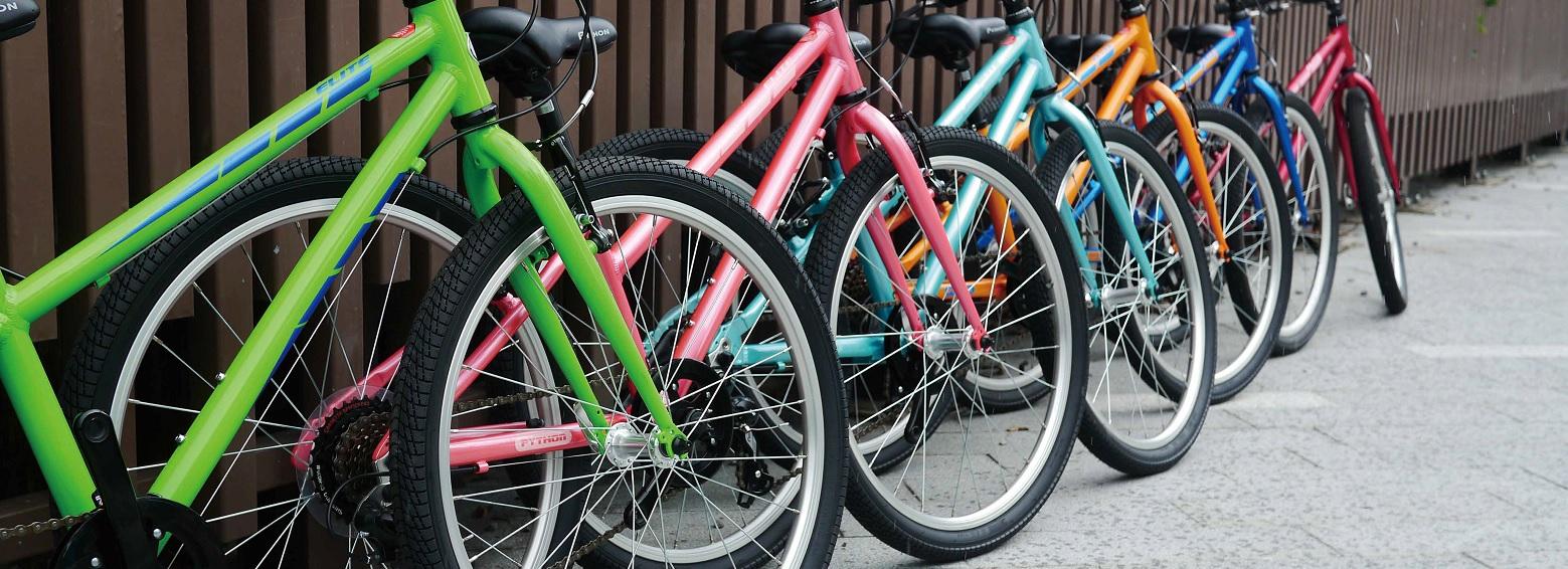 Python Bikes